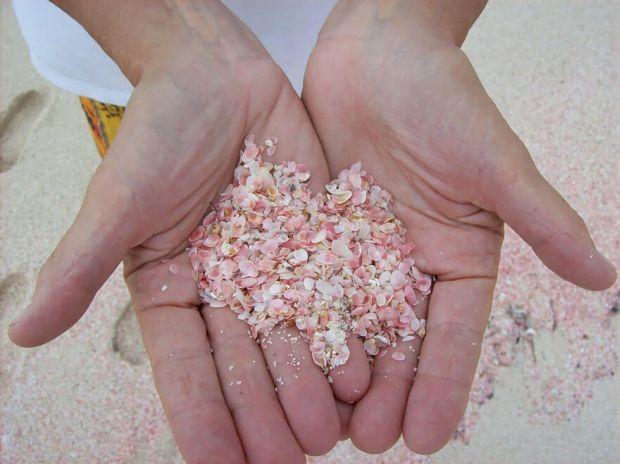 Резултат с изображение за розови плажове